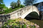 4. Rosita's Bridge